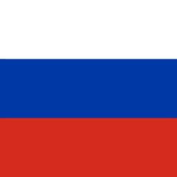 russia flag round icon 256