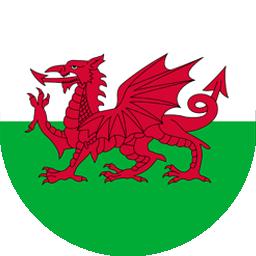 welsh flag round icon 256