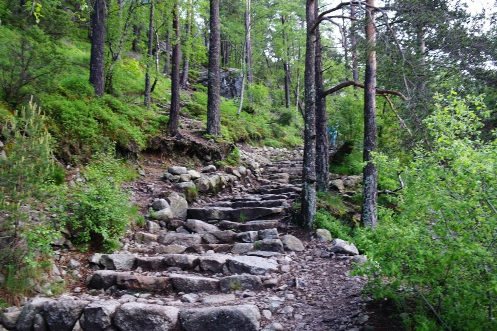 pulpit stone stairs running up into the woods