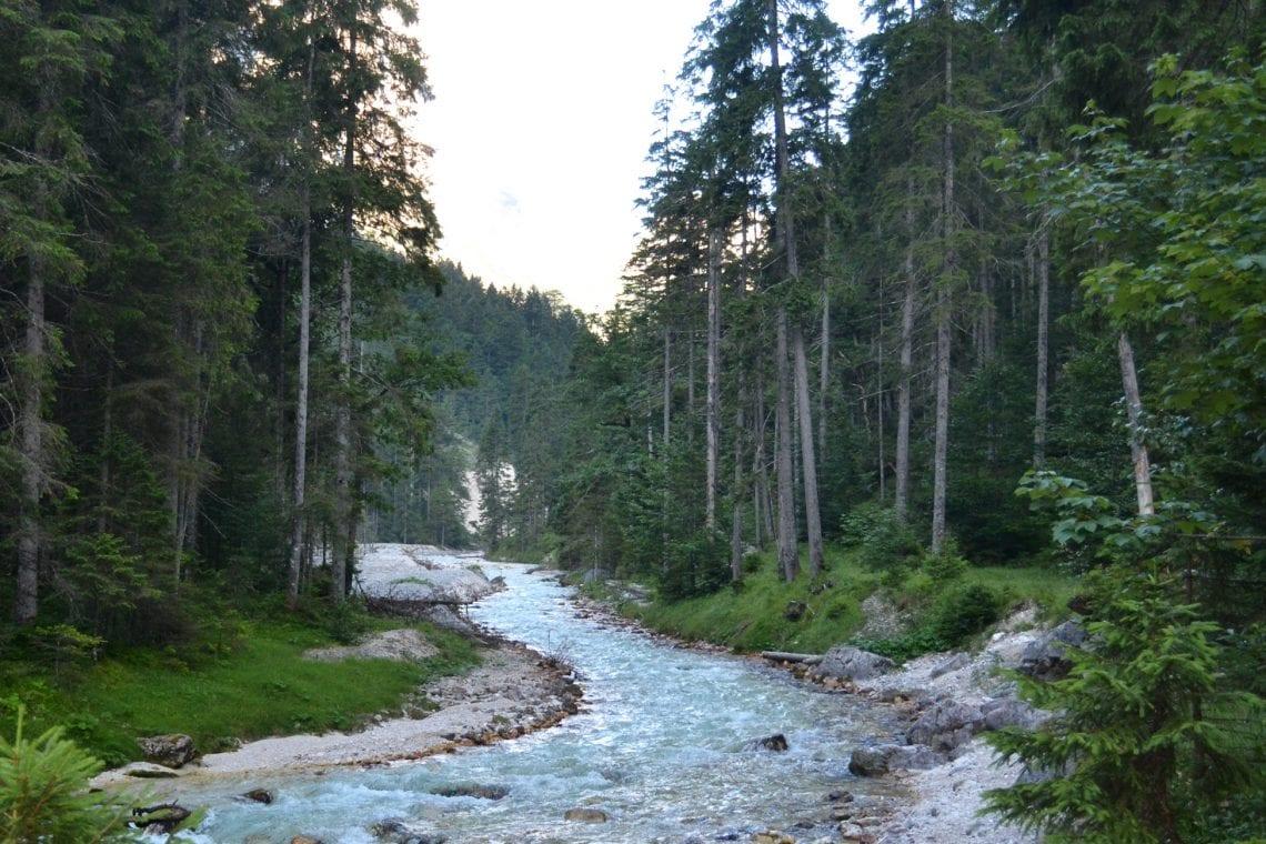 zugspitze stream running through the woods