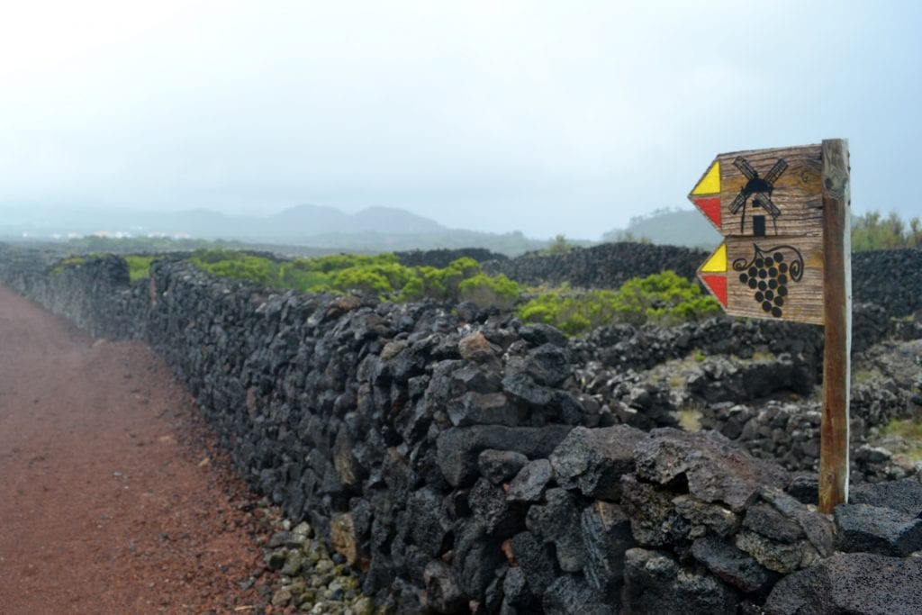 azores bad weather on pico did not stop us going for a walk 2