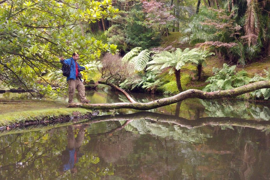 azores maz exploring the lush green botanical gardens