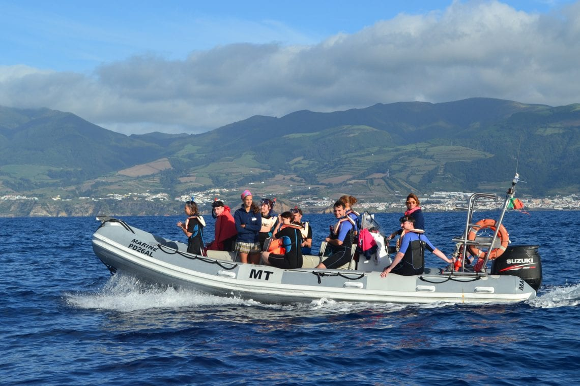 azores on a rib boat looking for whales