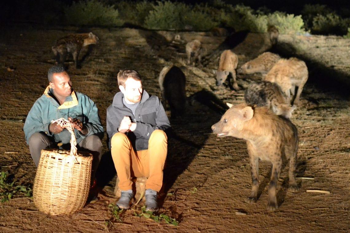 somaliland dan meeting some hyenas